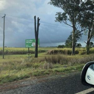 sugar-can-fields-with-storm-clouds